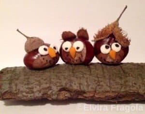 animaux avec des marrons
