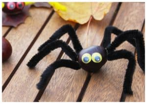 animaux fabriqués avec des marrons, spécial halloween