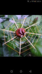 animaux rigolos avec des marrons, une amusante araignée...