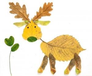 Occuper-les-enfants-en-automne-feuilles-mortes-un-cerf