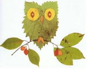Occuper-les-enfants-en-automne-feuilles-mortes-un-hiboo2
