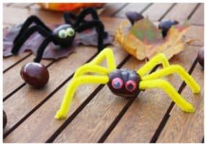 Un araignée pour une activité avec des marrons maternelle