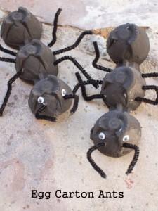 Créer une fourmi en bricolant une boite à oeuf